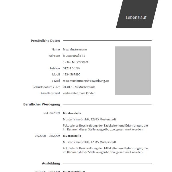 Vorlage / Muster: Lebenslauf professionell